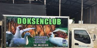 suriname, doksaclub, eend, export, vlees, trinidad-